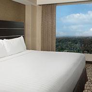 Embassy Suites by Hilton Niagara Falls Fallsview - 1 King Bed - Cityview Suite - 10th - 15th Floor
